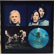 Nirvana SLTS framed miami 2