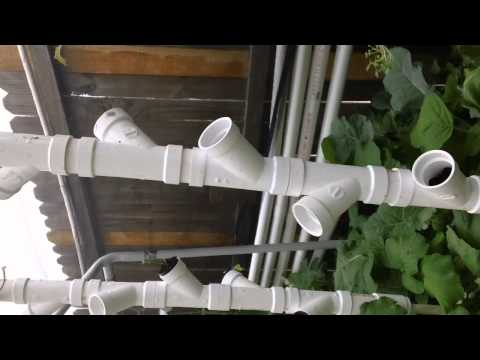 Florida Aqua Fresh Produce - Aquaponic Research Fish Farm