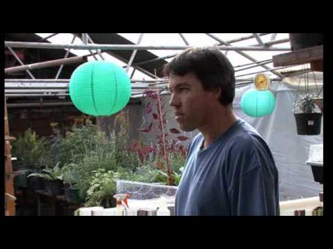 The Urban Conversion visits Colorado Aquaponics (clip)