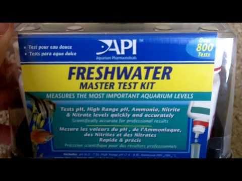 Aquaponics Update 2/7/2011