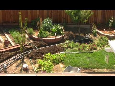 Gardening Rhythms: Aquaponics