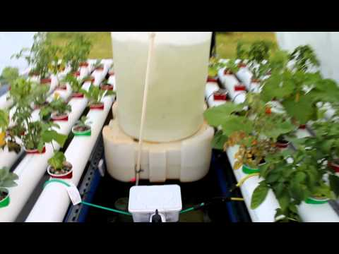 Solar powered aquaponics hoosier garden Part1 of 3