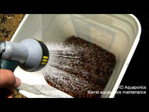 HD Aquaponics - Barrel aquaponics maintenance, floating raft , DWC, planting