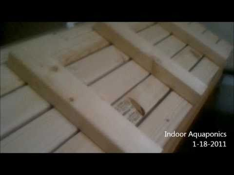 Indoor Aquaponics fish tank and grow beds