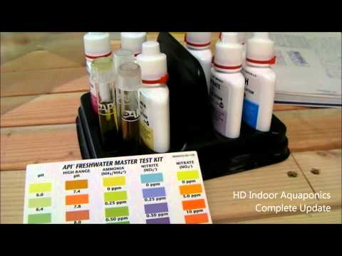 HD Indoor Aquapoincs - Grow beds, bell siphons, water test, high ph and 1080p