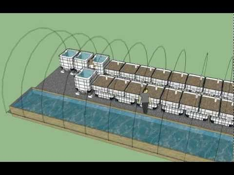 3D Aquaponics Greenhouse Model | Advanced Symbiotics