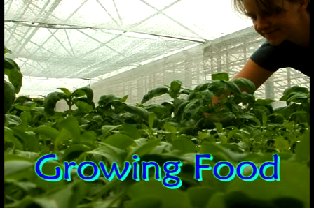Colorado Aquaponics and GrowHaus Kickstarter Campaign
