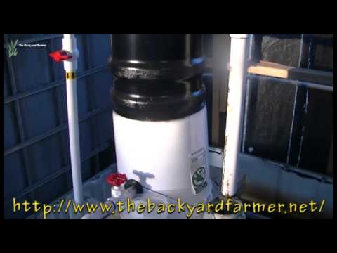 The Backyard Farmer video update- Oxygen in the water-what does it do?