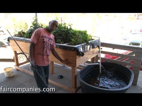 Internet of food: Arduino-based, urban aquaponics in Oakland
