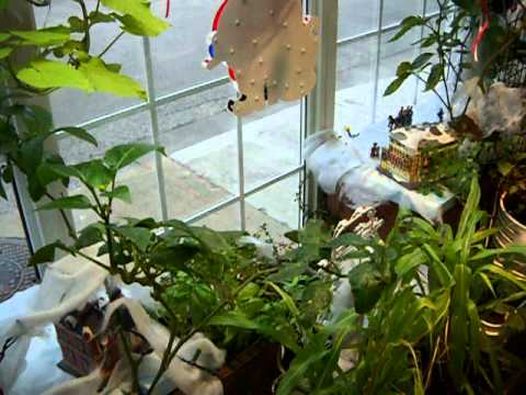 Aquaponic Tour Dec 5,12 002