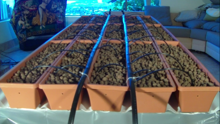 The Growzay Aquaponic System DVD/Video.