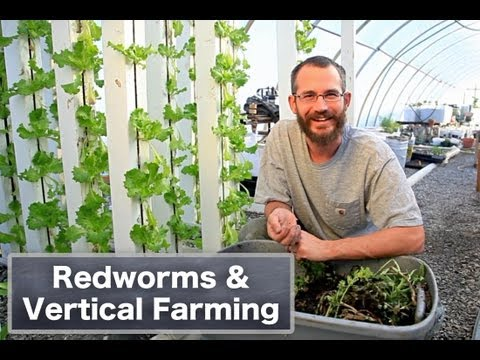 Redworms & Vertical Farming