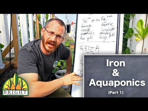 Dissolved Oxygen in Aquaponics