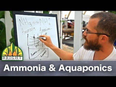 Ammonia & Aquaponics