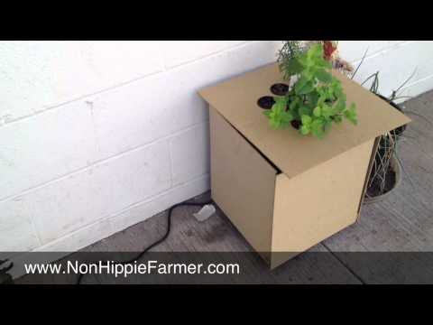 Kitchen Aquaponics System Part 3 - Update