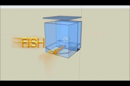 Fish Feeder 3