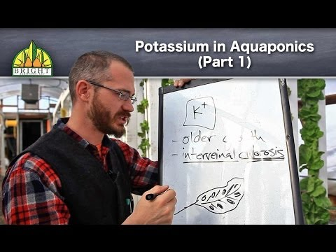 Potassium in Aquaponics (Part 1) - Overview