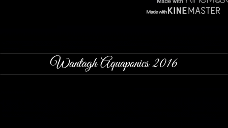 Aquaponics 2016