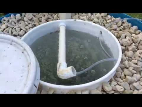 Small efficient simple cheap Aquaponics prototype 1
