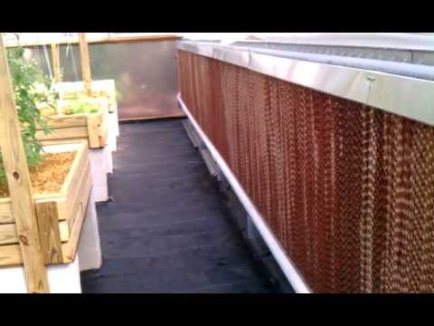 Aquaponic Greenhouse Cooling System