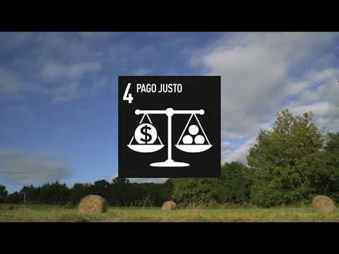 La Compra Pública como herramienta para transformar/Erosketa Publikoa eraldaketa tresna