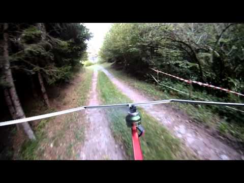flying in the woods