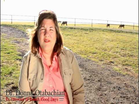 Ex. Director of Ranch Good Days, Dr. Donna Otabachian