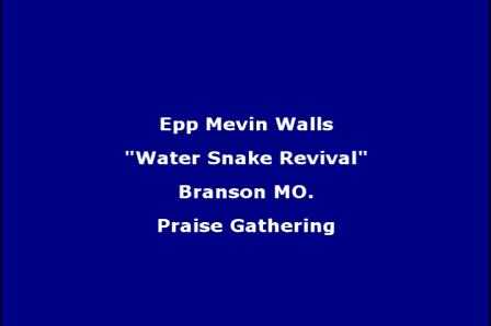 Epp Mevin Walls  (Water Snake Revival)
