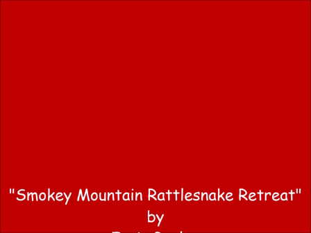 Smokey Mountain Rattlesnake Retreat