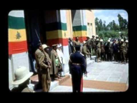 AFRICAN SOLDIER  -Alovera-fea -Ras naja
