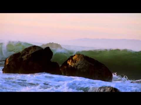 Blowin' In The Wind (reggae) by Lasana Bandelé