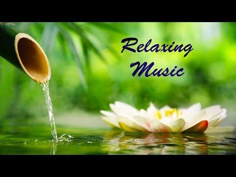 Relaxing Sleep Music: Deep Sleeping Music, Relaxing Music, Stress Relief, Meditation Music