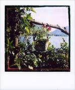 cartoline dal lago