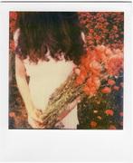 Primavera dipinta di rosso