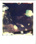 Polaroid Self Art