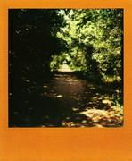 13 Aprile '14 - Parco Altomilanese.