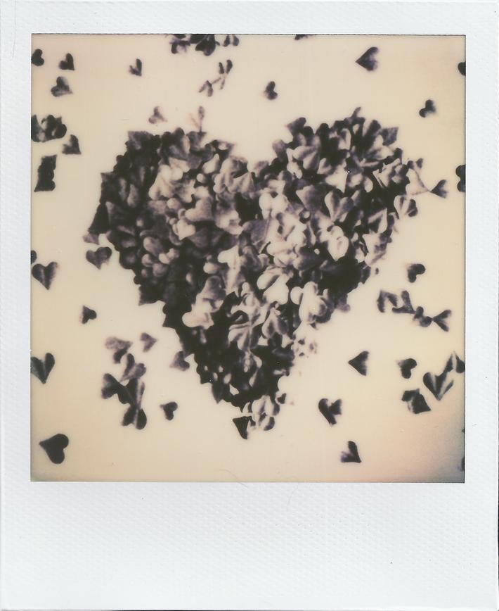 (heart) #73