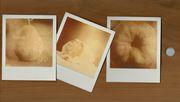 tagliere polaroid