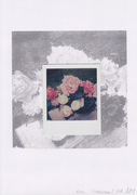 Antistress - Fiori (Staglieno) - Polaroid (Impossible 600 color) - 2016