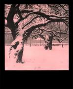 Abbracci (L'ultima neve)