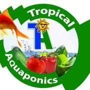 Tropical Aquaponics