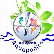 Aquaponik Berater