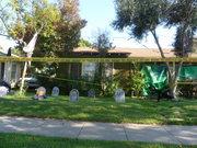 Halloween in Culver City, 2011