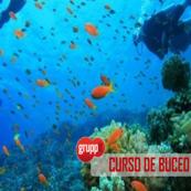 CURSO DE BUCEO PADI EN JÁVEA- JUNIO, JULIO Y AGOSTO