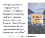 Insulina e Magnésio