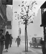 London Street Photography 1860-2010