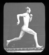 Olympic Celebration: Athletes in Motion