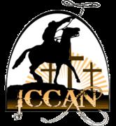 Texas ICCAN Regional Roundup!