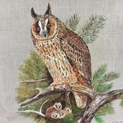 Owl with owlets