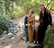 In the Groves: A Summer Solstice Journey